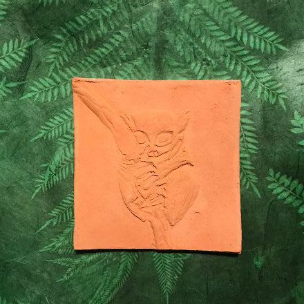 Fliese Motiv Koboldmaki natur