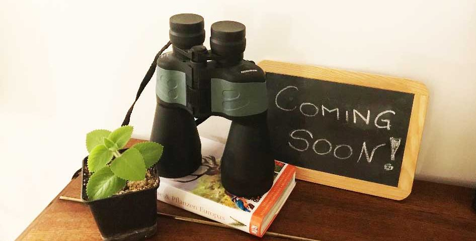 Coming Soon - Fernglas und Bestimmungsbuch