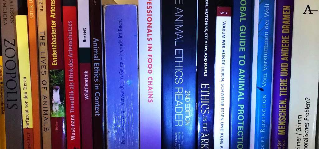 Foto eines Bücherschrank mit bunter Ethikbuchsammlung