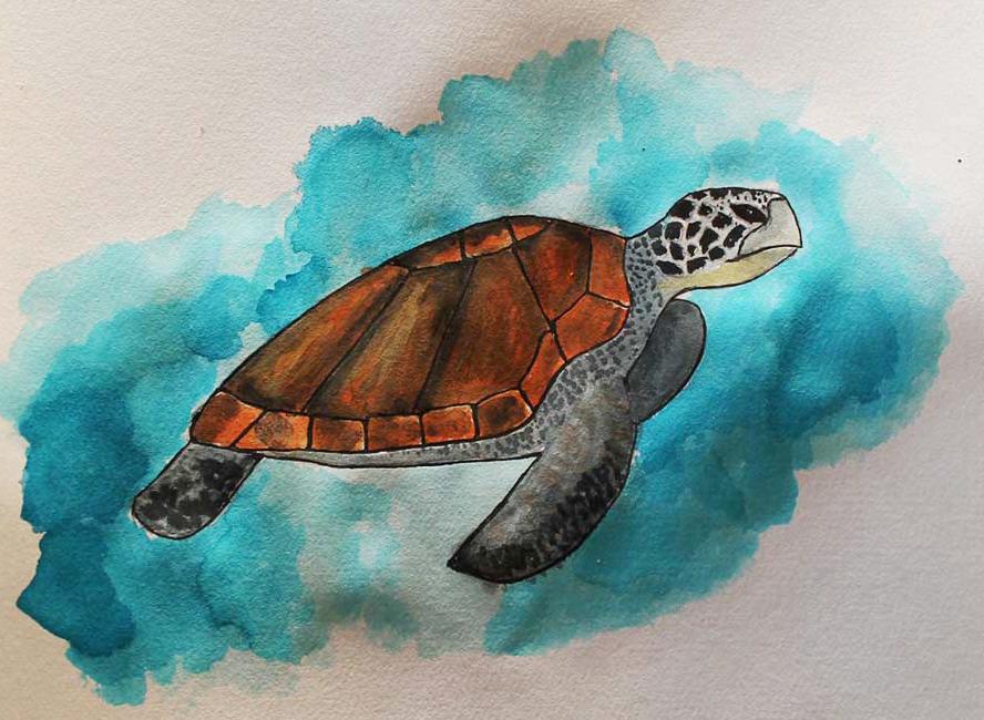 Grüne Meeresschildkröte Wasserfarben