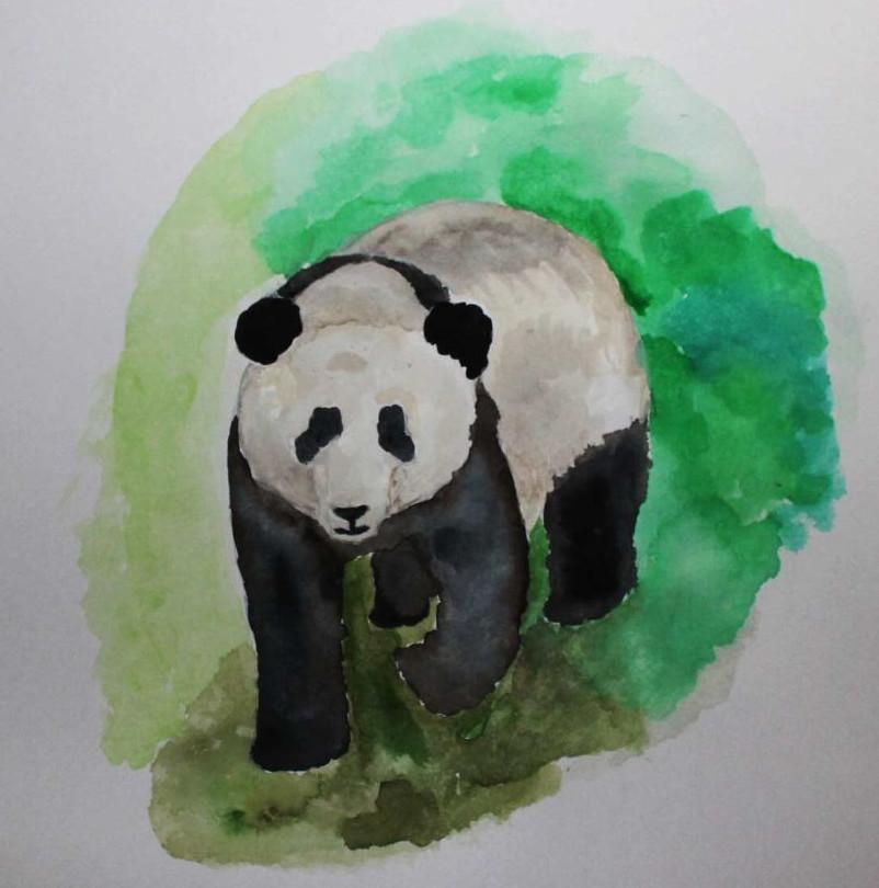 Panda gemalt in Wasserfarben