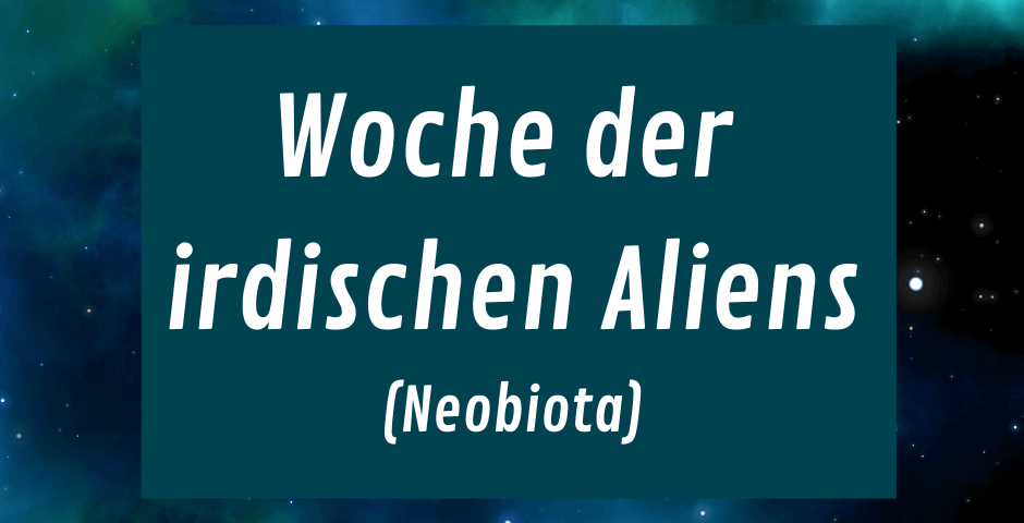 Hintergrundbild Weltall mit Teyt - Woche der irdischen Aliens