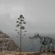 Klippe auf Malta mit eingefügten Elefantenskelett