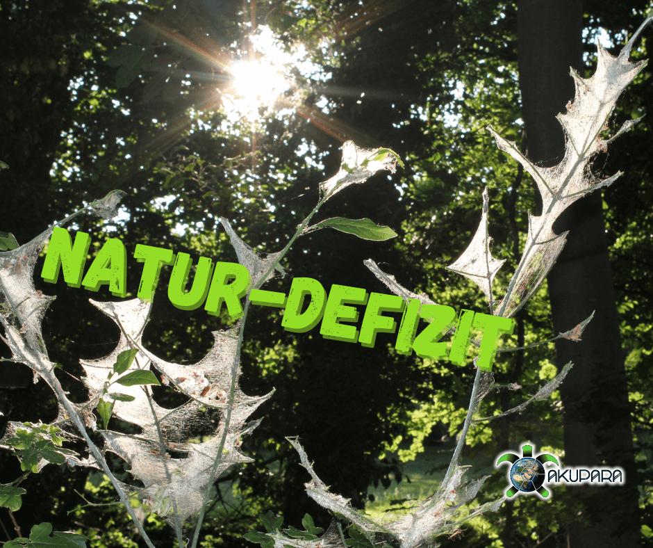 Spinnennetz und Sonne mit Überschrift Natur-Defizit