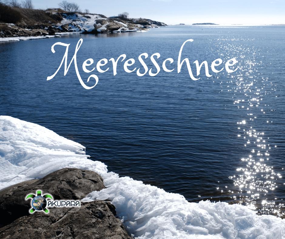 Meer mit Schnee im vordergrund mit der Überschrift Meeresschnee