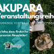 AKUPARA Veranstatlungsreihe mit Expertinnen Interviews Titelbild