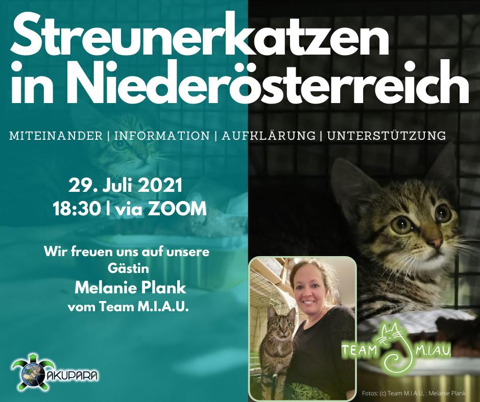 Akupara-Tierschutz-Artenschutz-Naturschutz-Veranstaltungsreihe-Melanie Plank-Team Miau
